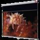 NOBO Nástěnné projekční plátno, 175x109cm (16:10)