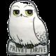 Polštář Harry Potter - Hedwig
