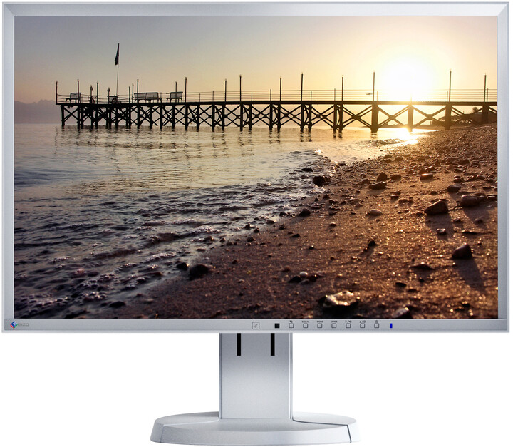 EIZO FlexScan EV2216WFS-GY - LED monitor 22""