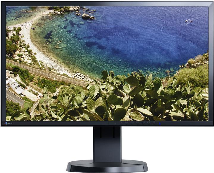 "EIZO FlexScan EV2436WFS-BK - LED monitor 24"""