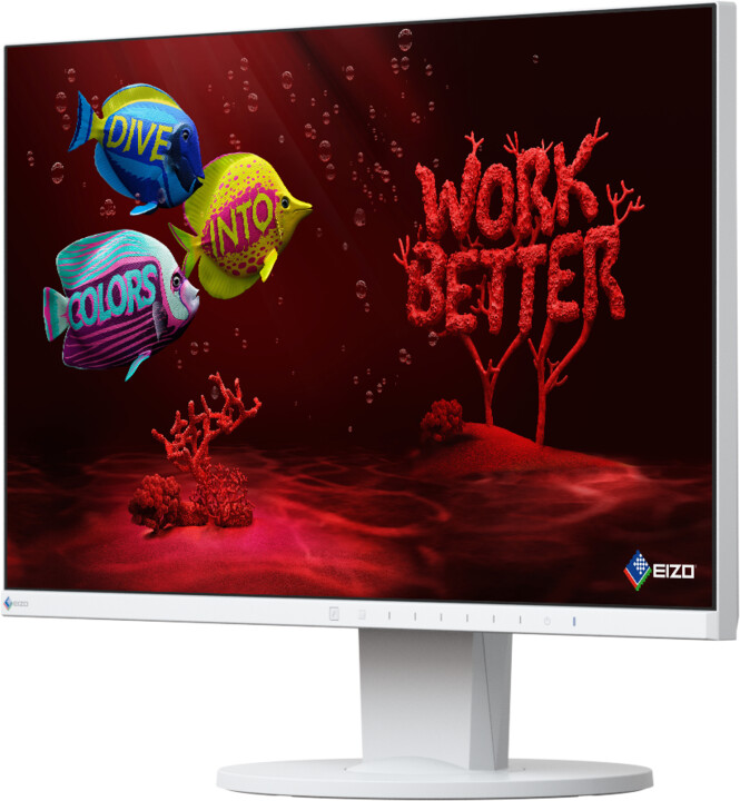 EIZO FlexScan EV2450-WT - LED monitor 24""