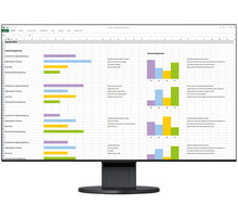 EIZO FlexScan EV2451-BK - LED monitor 23,8""