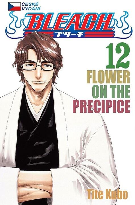 Komiks Bleach - Flower On The Precipice, 12.díl, manga