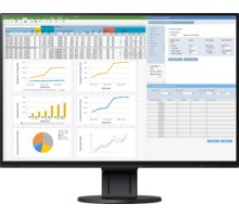 EIZO FlexScan EV2457-BK - LED monitor 24""