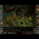 Icewind Dale - Enhanced Edition - PC