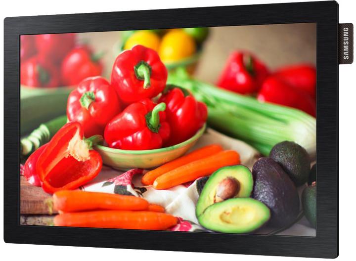 "Samsung DB10D - LED monitor 10"""