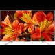 Sony KD-75XF8596 - 189cm  + HBO GO na měsíc zdarma