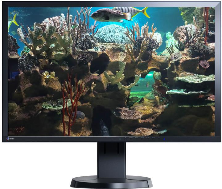 "EIZO FlexScan EV2336WFS-BK - LED monitor 23"""