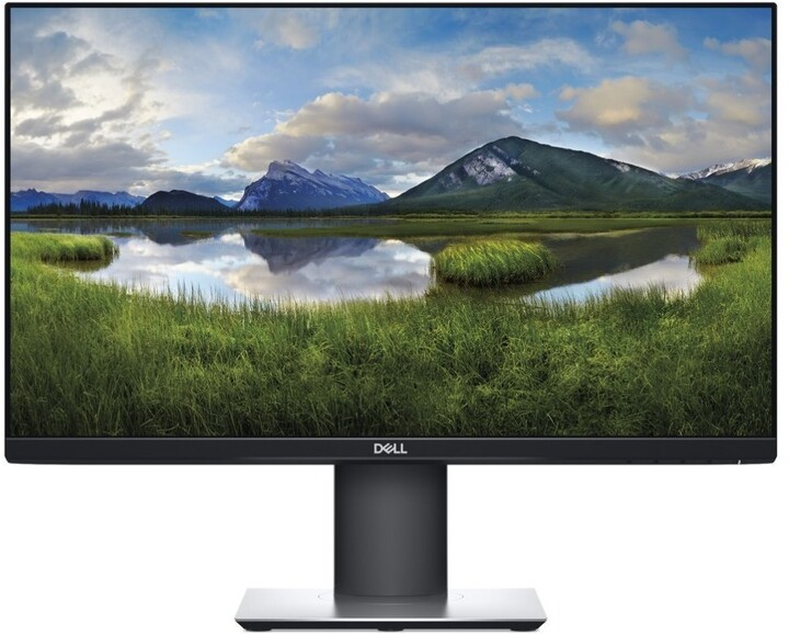 Dell Professional P2319H - LED monitor 23""