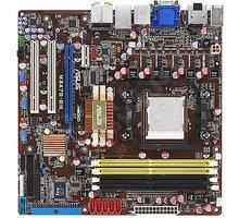 ASUS M3A78-EM - AMD 780G