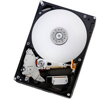 "Dell server disk, 3,5"" - 1TB pro PE T20/ T30/ T120/ R230/ T330/ R330 - 400-AFYB"