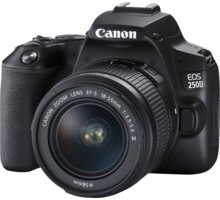 Canon EOS 250D + 18-55mm f/3.5-5.6 DC III - 3454C003