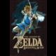 The Legend of Zelda Breath of the Wild - Link
