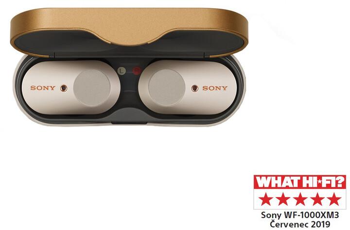 Sony WF-1000XM3, stříbrná