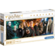 Puzzle Harry Potter - Panorama Characters