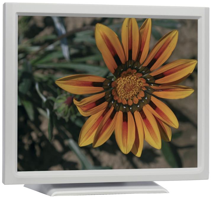"iiyama ProLite T1931SR-W - LCD monitor 19"""