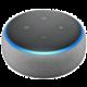 Amazon Echo Dot 3. generace, šedá