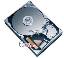 Hitachi Deskstar T7K250 HDT722525DLA380 - 250GB SATA II
