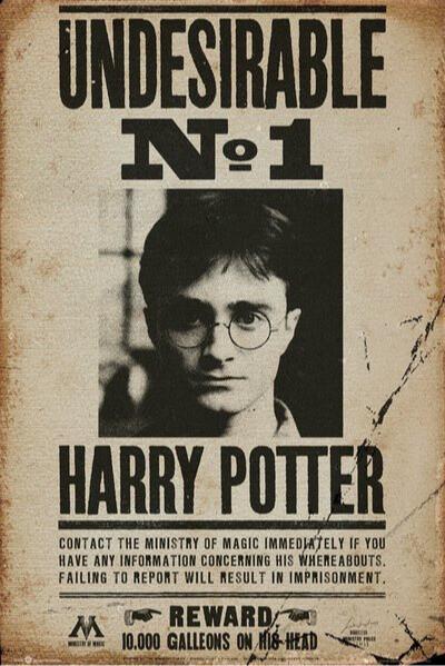 Plakát Harry Potter - Harry Potter - Undesirable No 1