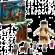 LEGO® Harry Potter™ 75967 Zapovězený les: Setkání Drápa a profesorky Umbridgeové