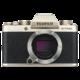 Fujifilm X-T100, tělo, zlatá  + Voucher až na 3 měsíce HBO GO jako dárek (max 1 ks na objednávku)