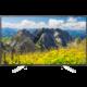 Sony KD-49XF7596 - 123cm  + Powerbanka EnerGEEK v hodnotě 499 Kč + Deliverance: The Making of Kingdom Come