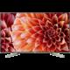 Sony KD-65XF9005 - 164cm  + HBO GO na měsíc zdarma