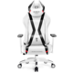 Diablo X-Horn 2.0, XL, bílá/černá