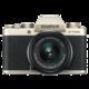 Fujifilm X-T100 + XC15-45mm F3.5-5.6 OIS PZ, zlatá