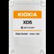 """KIOXIA KXD51RUE3T84, 2,5"""" - 3840GB"""