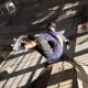 Remaster nejslavnější skateboardové hry vyjde i pro Switch