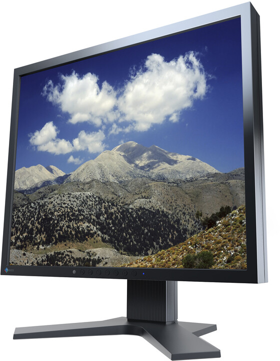EIZO FlexScan S1933H-BK - LED monitor 19""