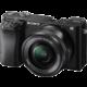 Sony Alpha 6100 + 16-50mm