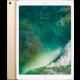 """Apple iPad Pro Wi-Fi, 12,9"""", 256GB, zlatá  + Voucher až na 3 měsíce HBO GO jako dárek (max 1 ks na objednávku)"""