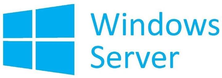MS Windows Server Standard 2019 OEM