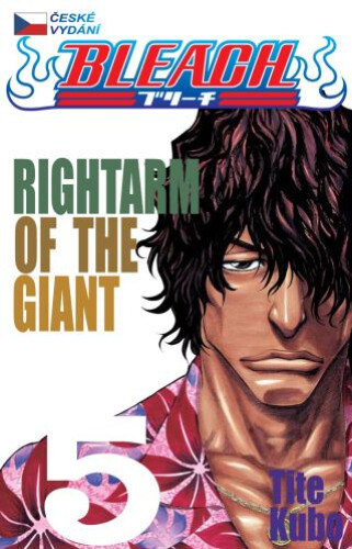 Komiks Bleach - Rightarm of the giant, 5.díl, manga