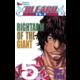 Komiks Bleach - Rightarm of the giant, 5.díl, manga