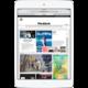 APPLE iPad Mini, Retina, 32GB, Wi-Fi, 3G, stříbrná
