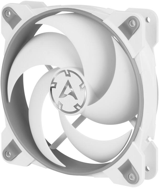 Arctic BioniX P120, grey/white