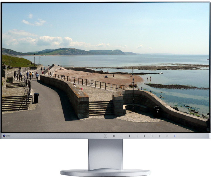 EIZO EV2450-GY - LED monitor 24""