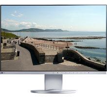 """EIZO EV2450-GY - LED monitor 24"""""""