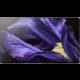 Sony KD-65AF9 - 164cm  + Konzole Sony PS4 Slim, 1TB, černá + FIFA 19 Champions Edition v hodnotě 8 990 Kč