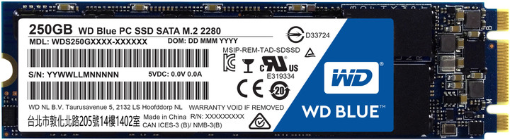 WD SSD Blue, M2 2280 - 250 GB
