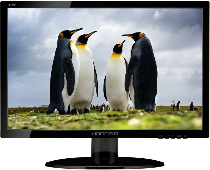 HANNspree HE195ANB - LED monitor 19""