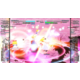 Touhou Genso Rondo: Bullet Ballet (PS4)