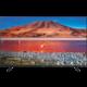 Samsung UE55TU7072 - 138cm  + 100Kč slevový kód na LEGO (kombinovatelný, max. 1ks/objednávku)