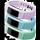 Garmin náhradní řemínky pro vívofit 2, velké, zelená, modrá, fialová