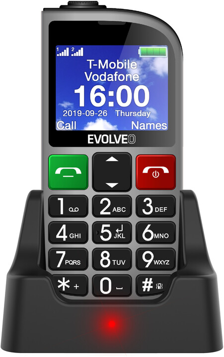 Evolveo EasyPhone FM SGM EP-800-FMS, Silver