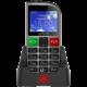 Evolveo EasyPhone FM SGM EP-800-FMS, silver  + Elektronické předplatné čtiva v hodnotě 4 800 Kč na půl roku zdarma