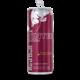 Energetický nápoj RedBull Winter Edition, 0,25l, švestka se skořicí